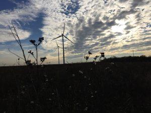 Windkraftrad bei Güntersleben