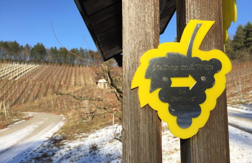 NaTour und Wein im Stettener Stein