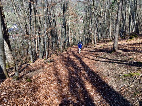 Wanderung Ramsthal