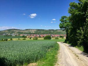 Blick auf Karlburg