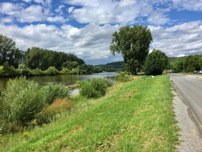 Mainradweg Sommerhausen