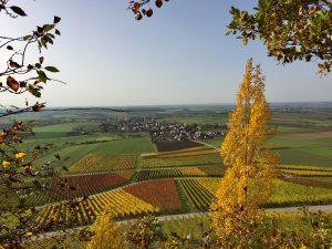 Blick auf Bullenheim
