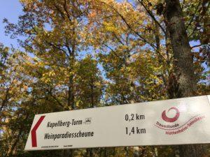 TraumRunde Hüttenheim-Seinsheim