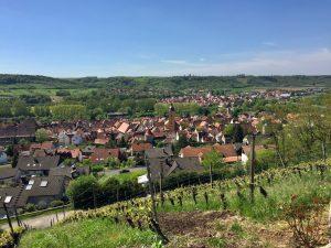 Ausblick Sommerhausen
