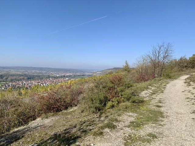 Höhfeldplatte Thüngersheim