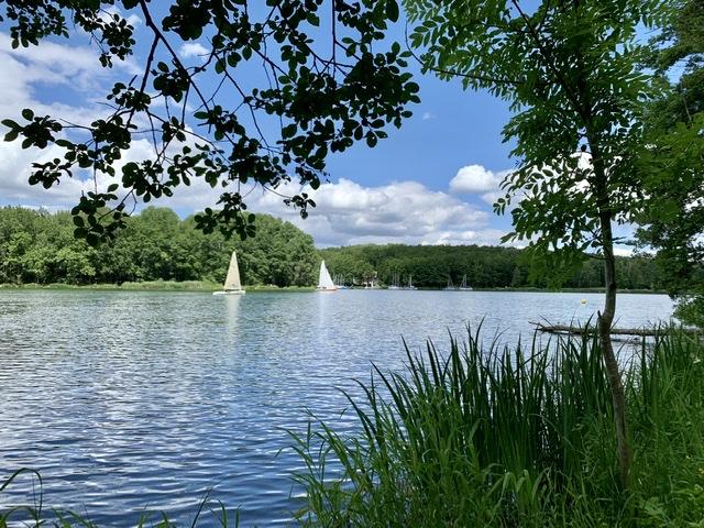 Segeln Ellertshäuser See