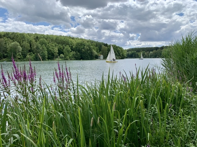 Wassersport Ellertshäuser See